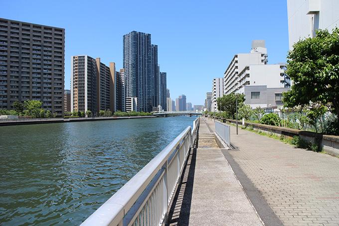 豊洲運河昼