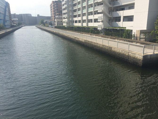 通常の運河の潮色