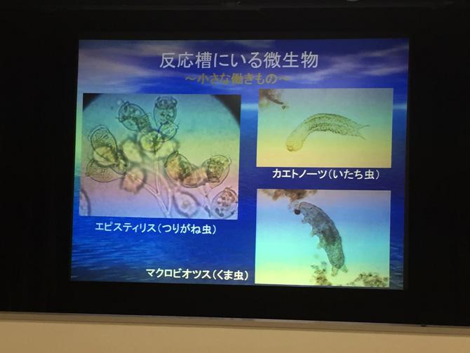 スライド解説03