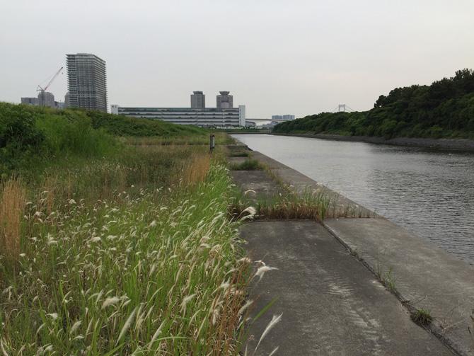 『有明親水海浜公園』予定地03