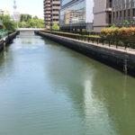 大島川西支川