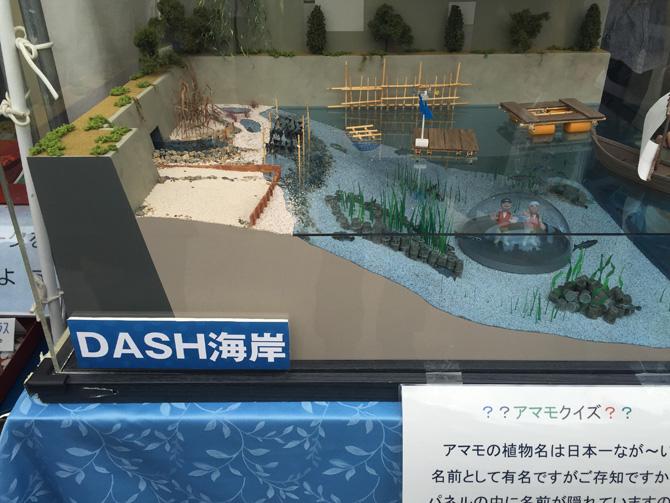 DASH海岸模型