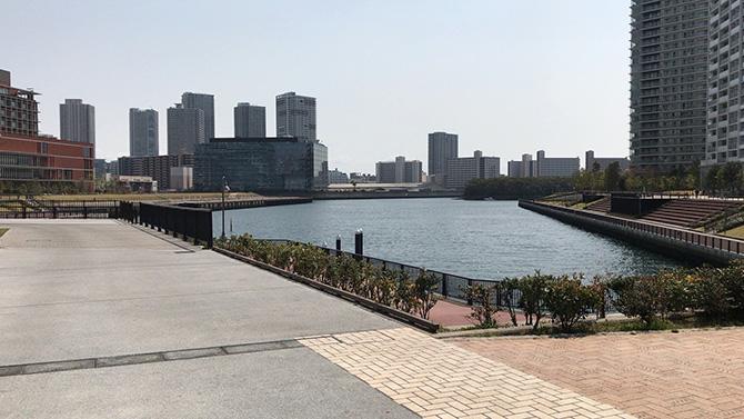 豊洲6丁目公園から東電堀
