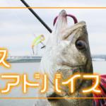 前田泰久シーバスガイド&アドバイス