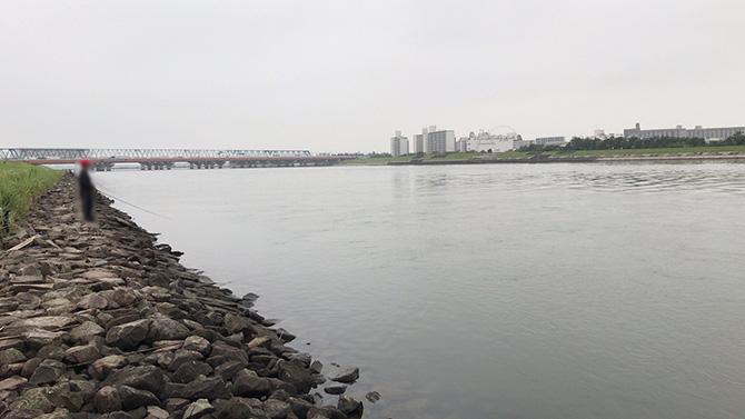 旧江戸河口